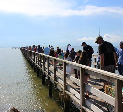 A large group of people walking on a dock